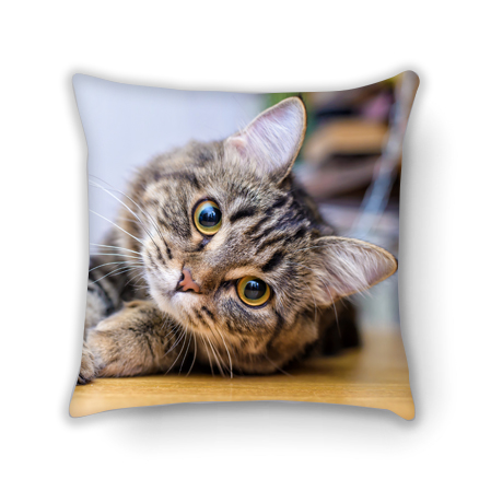custom cat photo cushions online
